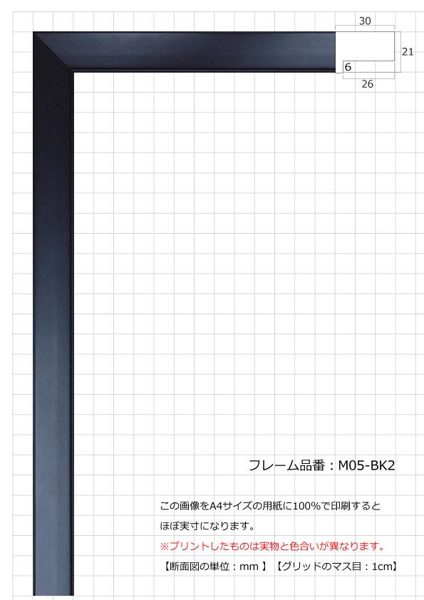 M005-BK2
