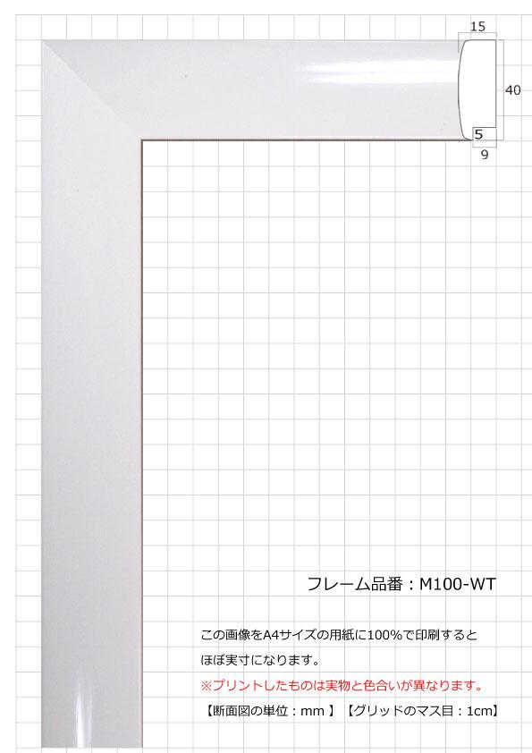 M100-WT