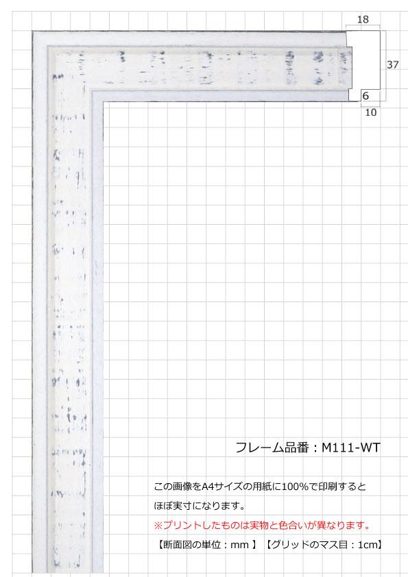 M111-WT