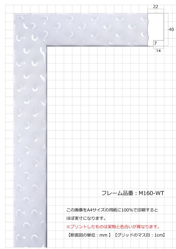 M160-WT