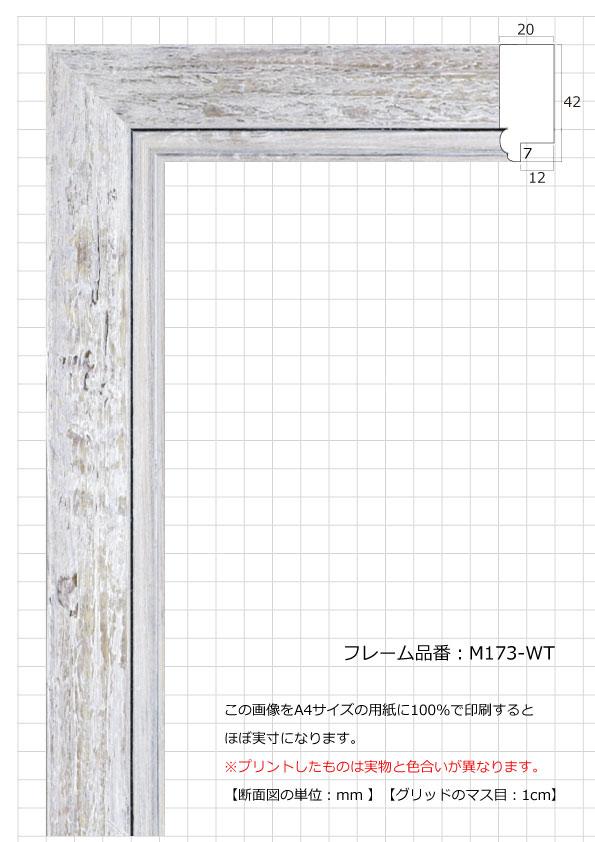 M173-WT
