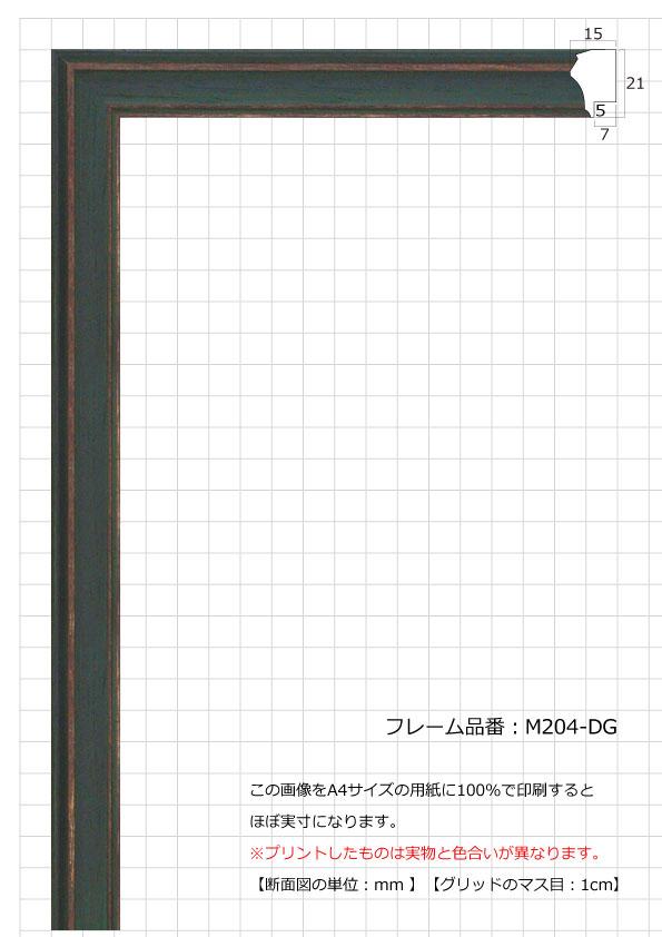 M204-DG