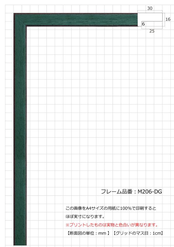 M206-DG
