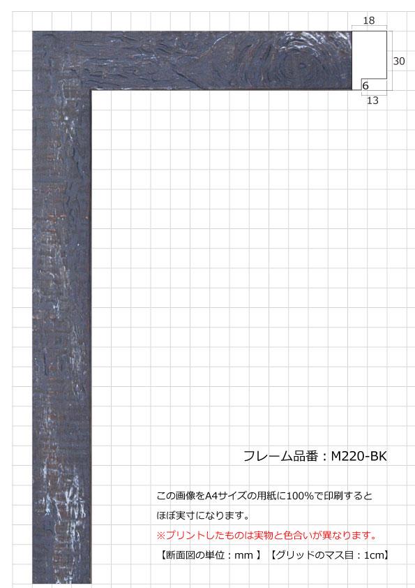 M220-BK