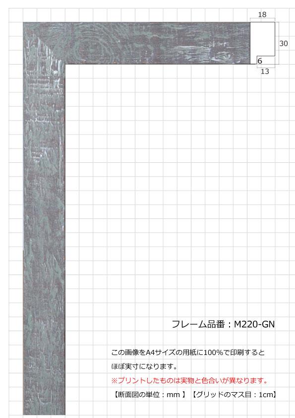 M220-GN