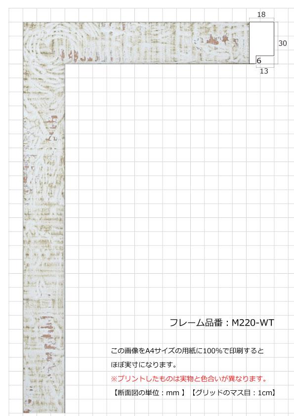 M220-WT