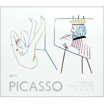 PICASSO-A13