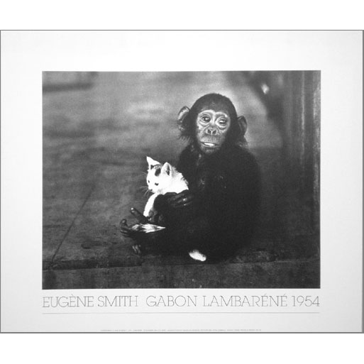 SMITH-CAT-R